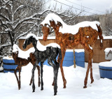 Three Horses in the Snow