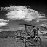 Wagon Reamins; Calico