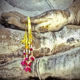 BuddhasHands80.jpg