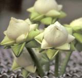 Folded Lotuses