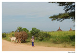 Charette Bagan