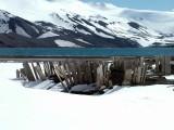 Barrel Staves - Deception Island - Antarctica.JPG