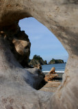 Rialto Beach through log