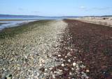 Maxwelton Beach