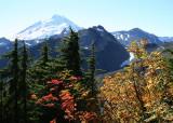 31 Mt. Baker