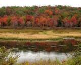 Gamelands Pond