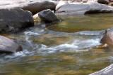 Mountain Stream Blur