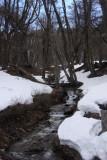 Agua do degelo de primavera
