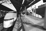 Two Shinkansen at Tokyo Station