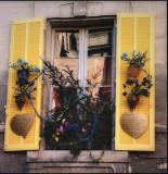 Arles window