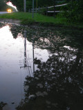 Puddle View.jpg