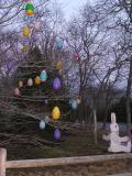 Amazing Egg Tree.jpg