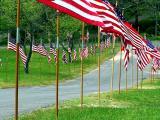 Memorial Day Flag Walk.jpg