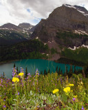 Grinnell Lake with Flowers.jpg