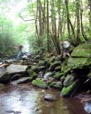 Motion at the Creek.jpg