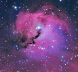 The Seagull Nebula - NASA APOD 12 Jan 2011