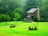Gladie 2- Eastern Kentucky.jpg