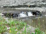 Rock Waterfall 2.jpg