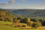 The Gwydyr Forest
