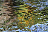 Water Reflections Abstract  #2