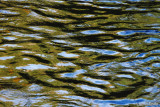 Water Reflections Abstract  #3