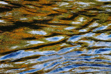 Water Reflections Abstract  #4