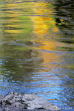 Water Reflections Abstract  #5