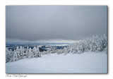 Mont Orford _MG_7168.jpg