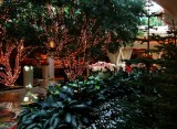 Chirstmas Decorations and Lush Foliage at the Wynn