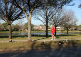 Jogger and the Birds