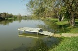 Muddy Pond - No Leprechauns