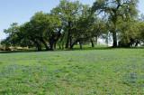 Blue Field at Old Baylor