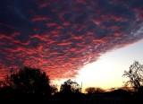 April 6 Dawn