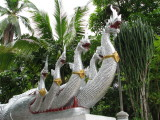Dragons Guarding Wat