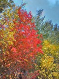 2012-09-23_14-13-40_HDR.jpg