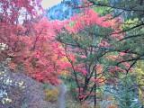 2012-09-23_14-16-58_HDR1.jpg