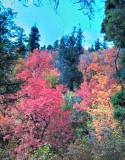 2012-09-23_14-30-38_HDR.jpg