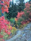 2012-09-23_16-25-19_HDR.jpg