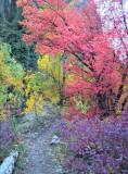 2012-09-23_16-59-55_HDR.jpg