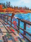 Swan Lake Impressions