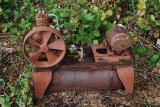 Skeleton-of-Power -03-04-06.jpg