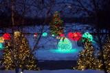 Chicago Botanic Garden in winter, Chicago Botanical Garden
