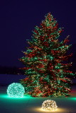 Blurring out the snow - Merry Christmas!, Chicago Botanical Garden