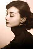 Yousuf Karsh, Audrey Hepburn portrait, Art Institute of Chicago