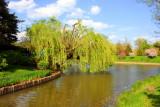 Chicago Botanical Garden from the ZigZag Bridge