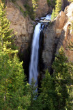 Tower fall (132 feet) - Yellowstone National Park