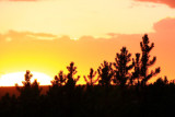 Sunset - Yellowstone National Park