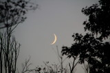 Rock Cut State Park, Illinois - the moon is out