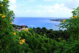Rio Bueno Bay, Jamaica