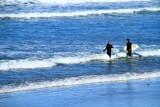 Surfers heading out, La Jolla